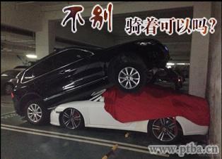 女司机交通事故图片