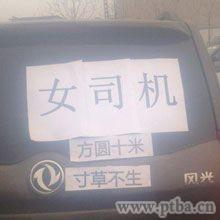 女司机开车事故图片