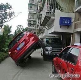 女司机事故率是多少